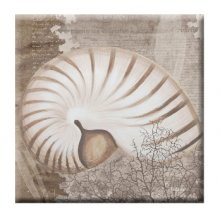 SEA BREEZE - NAUTILUS 60x60cm Kelly Lane SEA BREEZE  NAUTILUS Canvas BlockmountCanvas Blockmount is a timber board with a stretched canvas mounted on topMeasur. Please Click the image for more information.