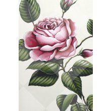 ROSE SINGLE 60x90cm Canvas Kelly Lane ROSE SINGLE CanvasCanvas is stretched onto a timber frame which is ready to hang on your wall Meas. Please Click the image for more information.
