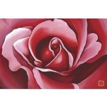 ROSE BLOOM 60x90cm Canvas Kelly Lane ROSE BLOOM CanvasCanvas is stretched onto a timber frame which is ready to hang on your wall Meas. Please Click the image for more information.