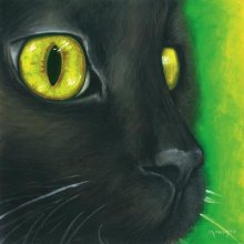 CAT - BLACK 25cm x 25cm 25cm x 25cm canvas Please Click the image for more information.