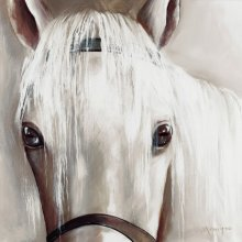 HORSE - CLOSE UP 25cm x 25cm 25cm x 25cm canvas Please Click the image for more information.