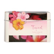 KELLY LANE Soap Block Tropical Kelly Lane product from the Tropical RangeSet of 2 Soap Blocks  Coastal 95gm x 2 Beautifully packaged with a ceramic cluster of hibiscus embelishment on the front to complete the story Please Click the image for more information.