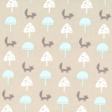 Indian Summer Wilderness Rock
