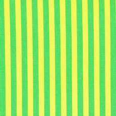 Clown Stripe Mint