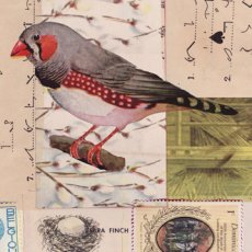 Vintage Birds sm 03