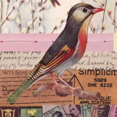 Vintage Birds sm 00  Please Click the image for more information.