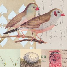 Vintage Birds sm 02  Please Click the image for more information.