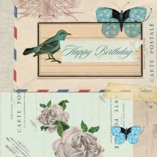 Happy Birthday (bird)  Please Click the image for more information.