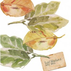 Leaf Studies  Please Click the image for more information.