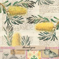Golden Wattle Thankyou  Please Click the image for more information.