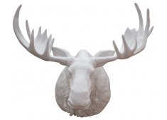 MOOSE HEAD-WHITE FIBREGLASS Please Click the image for more information.