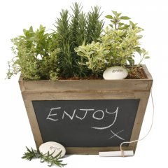 herb chalk box  our beautiful antiqued wood chalkbox is planted with a selection of culinary herbs creating an instant gourmet garden that has great gift appeal. Please Click the image for more information.