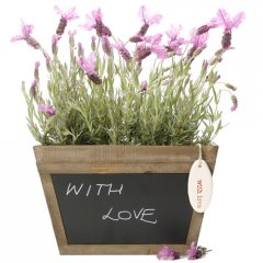 fragrant lavender chalk box  