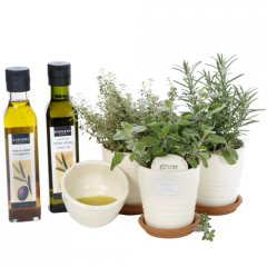 gourmet herb gift trio a selection of aromatic culinary herbs planted in our cute ceramic pod pots creating an instant gourmet garden on your window ledge or for your patio table. Please Click the image for more information.