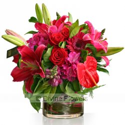 Signature Vase In Red & Pinks  Priced from $ 175  Click for more details