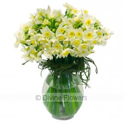 Jonquil Vase  Priced from $ 50  Click for more details