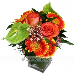 Citrus Squeeze Vase  Priced from $ 90  Click for more details