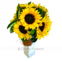 Sunflower Vase  Priced from $ 88  Click for more details