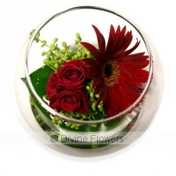 Juliet Sphere Vase  Priced from $ 58  Click for more details