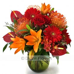 Signature Bouquet Vibrant  Priced from $ 130  Click for more details